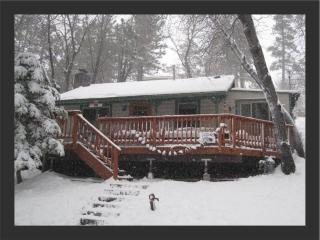 Romantic 1 bedroom House in City of Big Bear Lake - City of Big Bear Lake vacation rentals