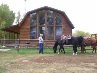 Paint Rock Cabin - Hyattville vacation rentals