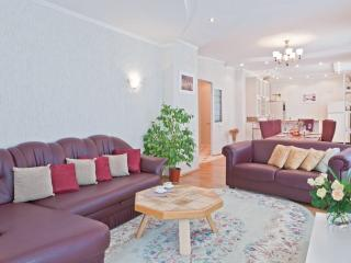 Vip-kvartira Two bedroom delux on Kirova - Minsk vacation rentals