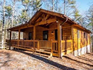 Aska Woodlands - Stay in this beautiful pet friendly cabin with fenced yard and gated porch - Mineral Bluff vacation rentals
