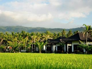 Pandawa Village Villas - Lovina vacation rentals