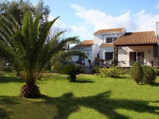 Villa Lefka - Stunning villa by the Seaside - Lefkimi vacation rentals