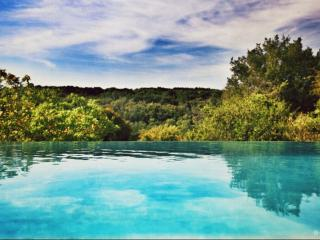 BONHEUR BOHEME - Chambre Rétaise - Ecully vacation rentals