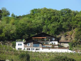 Appartement Linter - Merano vacation rentals