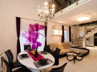 Luxury apartment in Lapad,Dubrovnik - Dubrovnik vacation rentals
