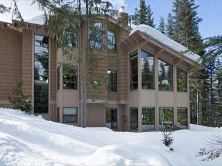 Luxury Ski-in/Ski-Out, Media Room, Wood-Burning Fireplace, Private Hot Tub - British Columbia Mountains vacation rentals