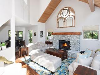 Snowgoose #14 | Renovated , Ski Home Access, Free Village Shuttle, Hot Tub - Whistler vacation rentals