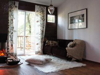 NY Loft nestled in Calif. Redwoods!  (TOTL #1314N) - Camp Meeker vacation rentals