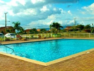 The View, 2 bed apt shared pool, gated community - Kingston vacation rentals