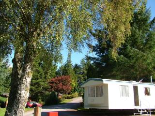 Silver Caravan with garden views - Fort William vacation rentals