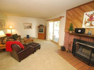 Snowdance Condominium A303 - Walk to slopes, updated bathroom, Mountain House! - Silver Plume vacation rentals