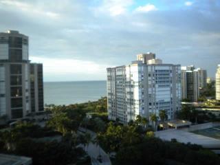 Bayshore Place in Park Shore - PS BSP 1201 - Naples vacation rentals