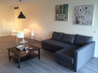 Beautiful city center apartment - Rotterdam vacation rentals