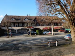 Maison joyeuse au coeur du village - Veigy-Foncenex vacation rentals