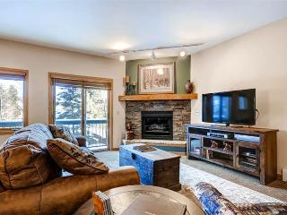 Appealing Breckenridge 2 Bedroom Walk to lift - ALA23 - Breckenridge vacation rentals