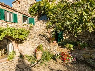 Exquisitely restored farmhouse in the heart of Chianti Classico. SAL CPL - Chianti vacation rentals