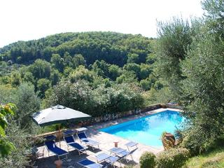 Large, spacious farmhouse with villa- like proportions in the hills of northwest Lucca. SAL PLZ - Lucca vacation rentals