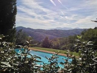 Beautifully restored olive mill and barn set among olive groves, features a salt water pool, and is located between Lucca and the Versilia coast SAL SOR - Lucca vacation rentals