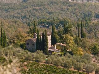 Beautiful farmhouse in secluded Castello di Volpaia estate. SAL VOL - Chianti vacation rentals