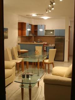 Nice Condo with Internet Access and Wireless Internet - Sveti Vlas vacation rentals