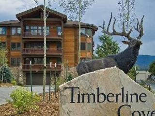 TIMBERLINE COVE #208 - Summit County Colorado vacation rentals