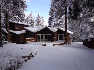 House in the Pines - Ouray vacation rentals