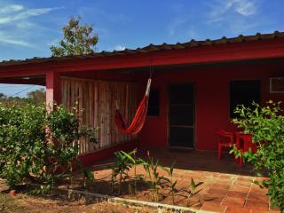 Rental unit on the road to Playa Arenal in Pedasi - Pedasi vacation rentals
