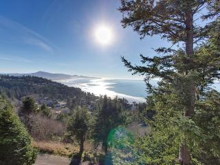 Gorgeous ocean views, pet-friendly cabin on the coast! - Oceanside vacation rentals