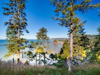 Eagles View - Neskowin vacation rentals