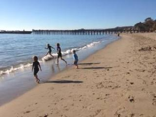 Aptos in January!!!  Empty beaches, warm weather :) - 2nd row!  Remodeled!  Steps to Seacliff beach!!! - Aptos - rentals