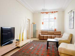 Vip-kvartira Two bedroom on Karla Marksa - Minsk vacation rentals
