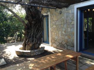 Epidaure - Epidavros vacation rentals