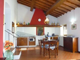 Casa Carbonaia - Vinci app. Le Scalette - Vinci vacation rentals