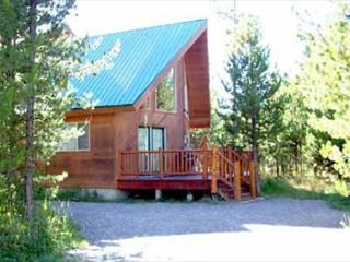 Cabin in the Trees is in a gated community surrounded by the Reservoir - Island Park vacation rentals