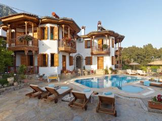 Villa Vali Begonya - Akyaka vacation rentals