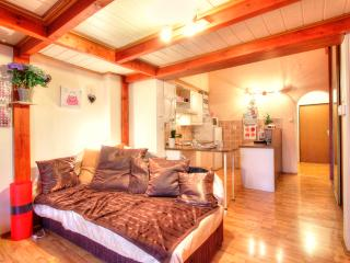 Buddha Studio - Prague vacation rentals