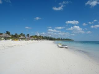 Paradise Awaits! Its all about the LOCATION! Unique 1 bedroom Suite! - Freeport vacation rentals