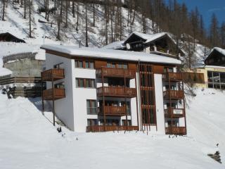 Apart Jil-Marie  Studio 1.5 Zimmerwohnung - Samnaun vacation rentals