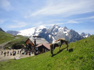 ITALIAN DOLOMITES ALPES, BEAUTIFUL FLAT  in the FASSA VALLEY - Trentino Dolomites vacation rentals