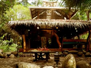 Dream Palm House @ congo-bongo - Puerto Viejo de Talamanca vacation rentals