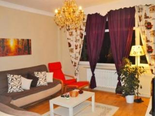 Large Apartment Close to Sultanahmet - 5130 - Istanbul vacation rentals