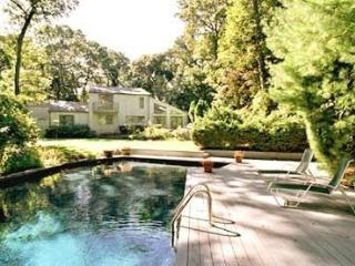 Perfect House with Internet Access and A/C - Bridgehampton vacation rentals