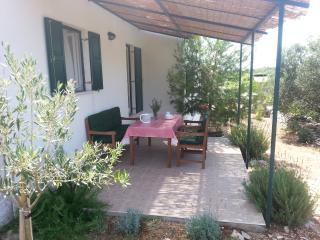 1 bedroom Apartment with Internet Access in Maslinica - Maslinica vacation rentals