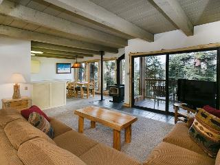 Timber Ridge 39 - Ski in Ski out Mammoth Condo - Mammoth Lakes vacation rentals