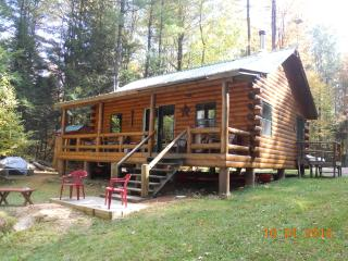 Riverside cabin in the Adirondack Mountains - Hermon vacation rentals