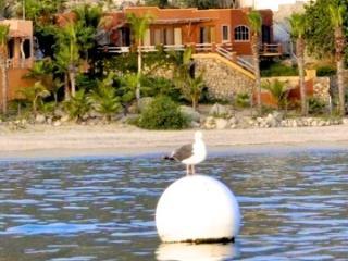 Casa Front Row, Enjoy the best beach in Baja - Los Barriles vacation rentals