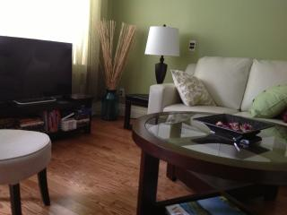 Rice House CONVENIENTLY LOCATED Downtown  3 BR HOU - Saint John's vacation rentals