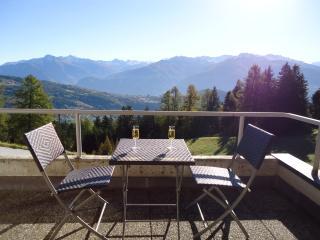 Rêve d'Anzère Chambre Bouquetin - Anzere vacation rentals