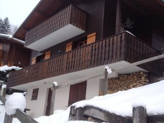 Chalet 'Le Roitet 5' - Chatel vacation rentals