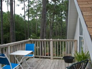 My Sapelo Retreat-Leave the World Behind - Darien vacation rentals